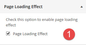 rt19-general-settings-page-loading-effect